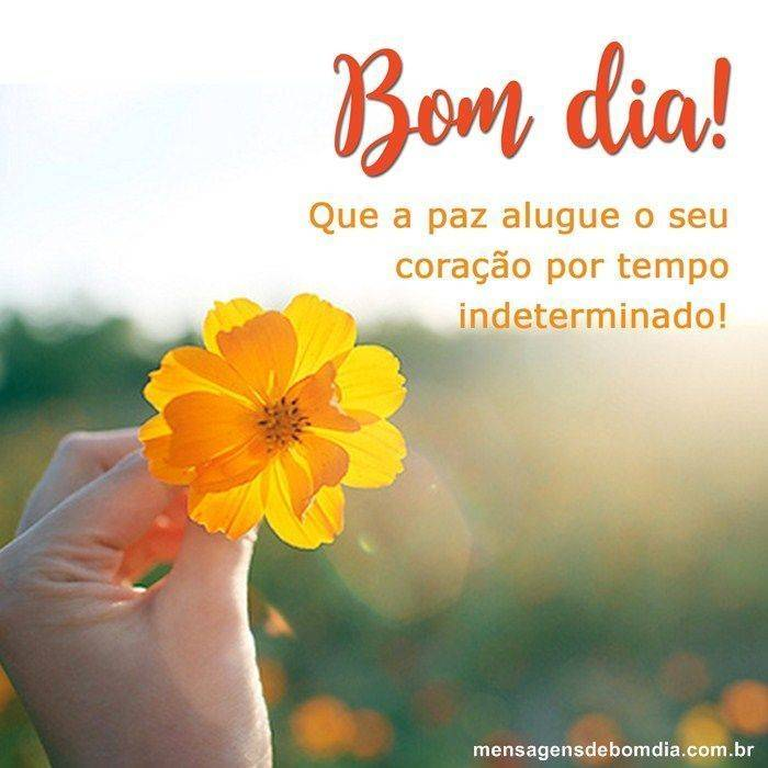 mensagem de bom dia amarelo