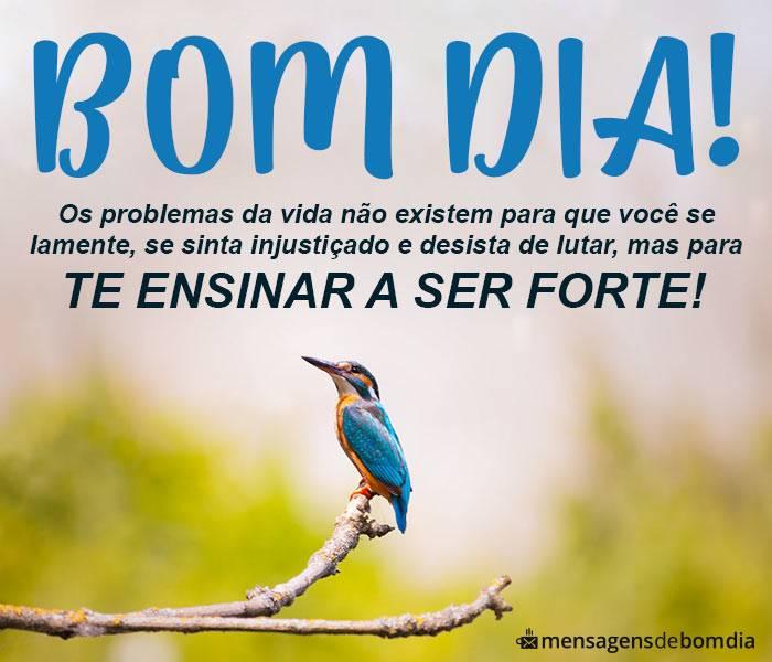 Imagens De Bom Dia Para Whatsapp Mensagens De Bom Dia