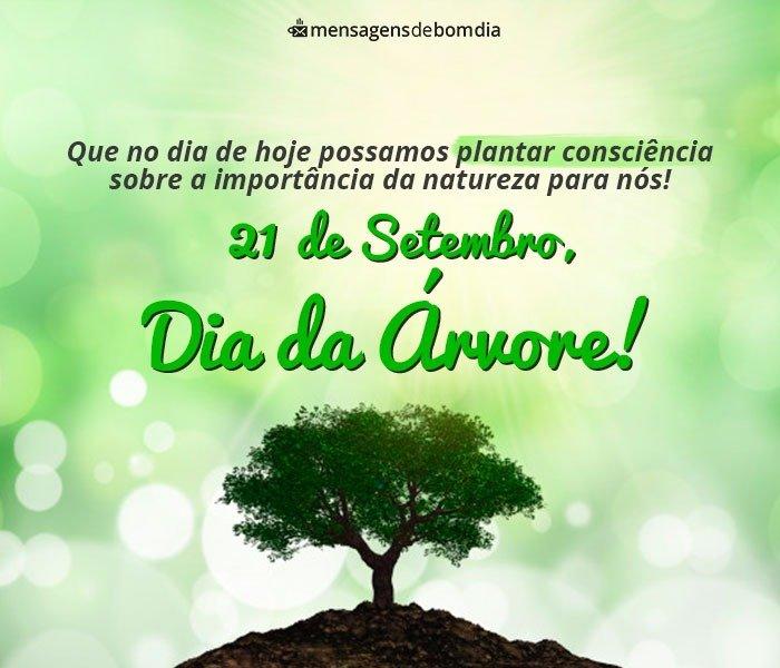 Dia da Árvore: Mensagens Conscientes para Preservar a Natureza (21/09)