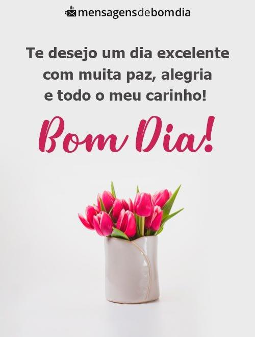 Desejo um Dia Excelente com Muita Paz